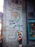 Harry Potter World Tracy Lynn Combs