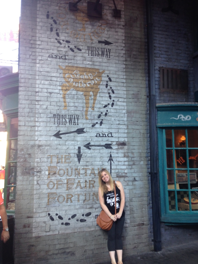 Harry Potter World Tracy Lynn Combs
